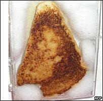 cheese_sandwich.jpg